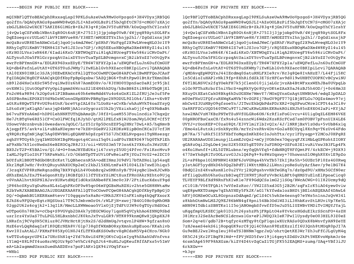 Image of two PGP-encrypted messages